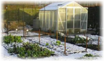 Снег в огороде
