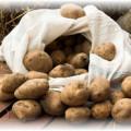 Рассыпанная картошка