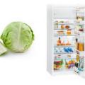 капуста и холодильник
