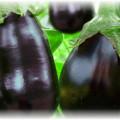 черные кабачки