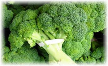 mnogo_brokkoli