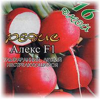 aleks_f1