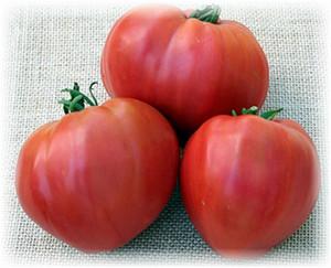 3_tomata