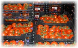 yshiki_s_pomidorami