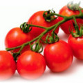 помидор черри