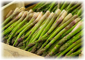 sparja_asparagus