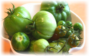 zelenue_pomidoru_na_tarelki