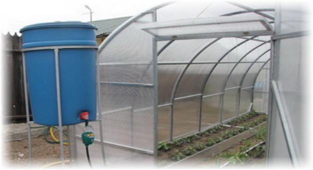 синий бак для полива растений в теплице