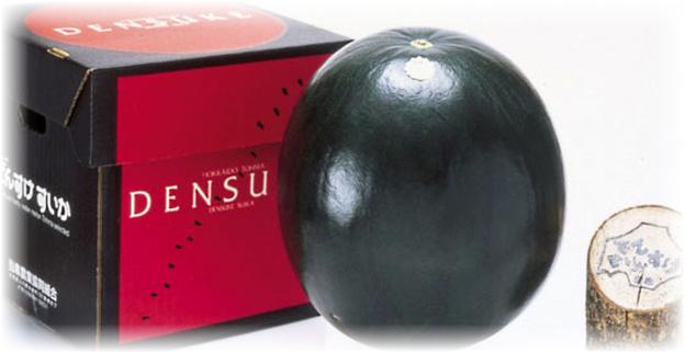 черный арбуз японской фирмы денсуке