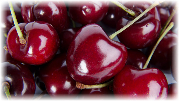 сочные ягоды черешни