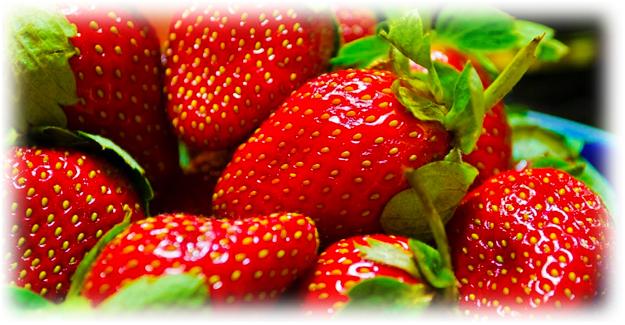 красные ягоды клубники