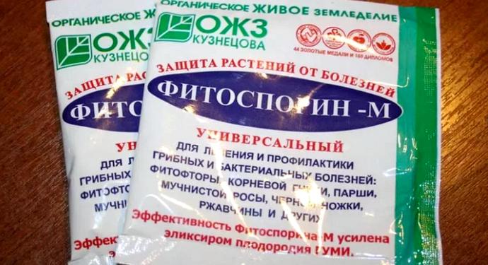 лекарство для клубники